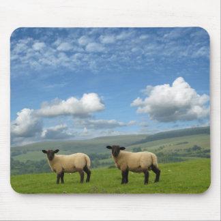Lambs Mouse Pad