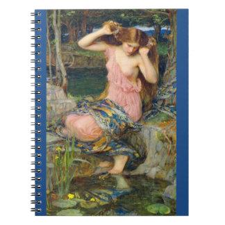 Lamia 1909 notebook