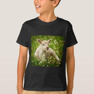 Lamp Chomp T-Shirt