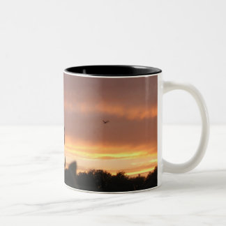 Lamp Post and Bird Two-Tone Coffee Mug