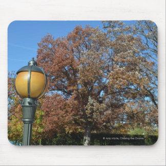 Lamp post at entrance to Arlington in Fall Mouse Pad