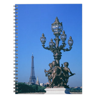 Lamp post on Pont Alexandre III Bridge and Note Book