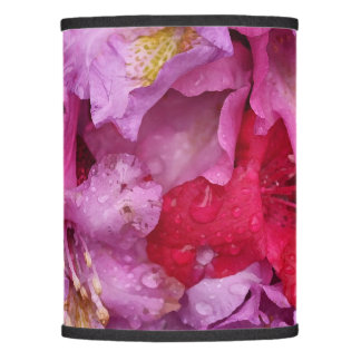 Lamp Shade (Only)
