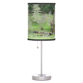 Lámpara de la belleza de Oregon