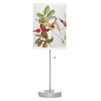 Lámpara de los pájaros de Goulds Sunbird