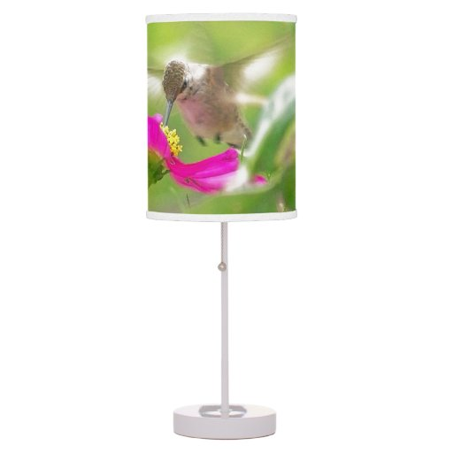Lámpara del colibrí del bebé