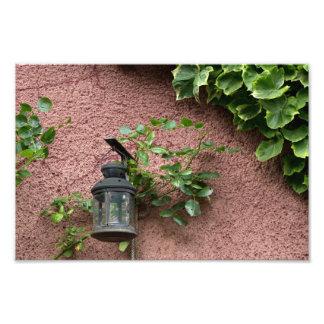Lámpara y foto de las hojas cojinete