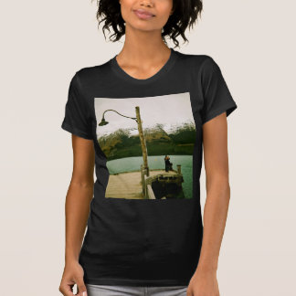 Lamppost and Mountains - New Zealand T-Shirt