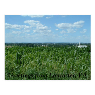 Lancaster field, Greetings from Lancaster, PA Postcard