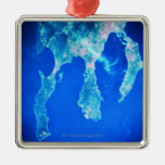 Land and Sea from Space Christmas Ornaments
