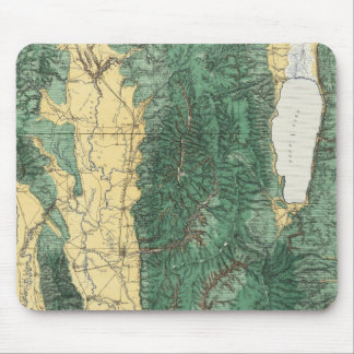 Land Classification Map of North Eastern Utah Mouse Pad