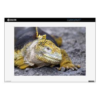Land Iguana Skins For Laptops