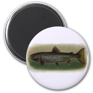 Land-Locked Salmon Painting Refrigerator Magnets