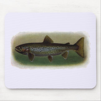 Land-Locked Salmon Painting Mouse Pad