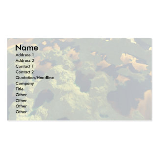 Land of a thousand lakes Double-Sided standard business cards (Pack of 100)