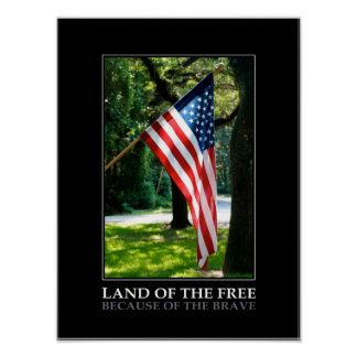 """""""Land of the free, because of.."""" patriotic poster"""