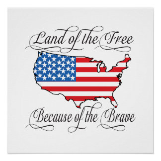 Land of the Free because of the Brave Patriotic US Poster