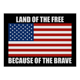 Land Of The Free Because Of The Brave Poster