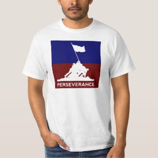 Land of the Free, Because of the Brave T-Shirt