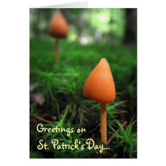Land of the Little People: St. Patricks Day Greeting Card