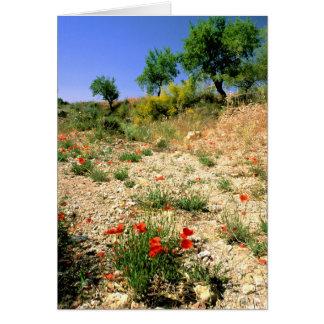 Landcape de Andalucian con las amapolas Tarjeta De Felicitación