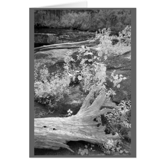 Landcape in rural New Hampshire Card