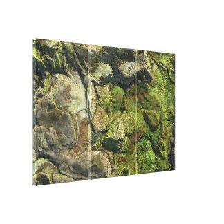 Landform 1 canvas print