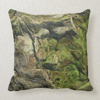Landform 1 Pillow