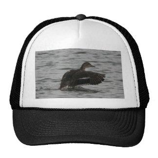Landing Duck Trucker Hat