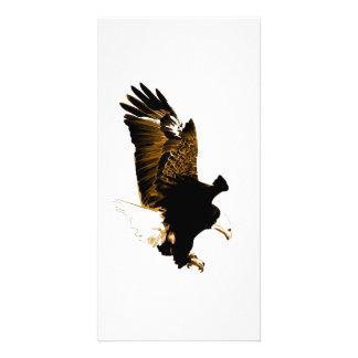 Landing Eagle Photo Cards