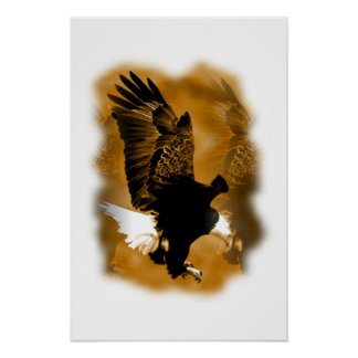 Landing Eagle Poster Print - Eagle Posters
