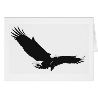 Landing Eagle Silhouette Cards