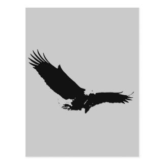 Landing Eagle Silhouette Post Cards