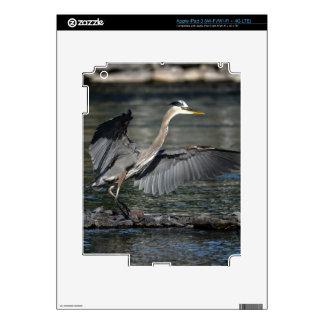 Landing Great Blue Heron Wildlife Bird Photo 3 iPad 3 Decals