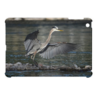 Landing Great Blue Heron Wildlife Bird Photo 3 iPad Mini Cases