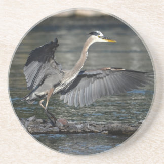 Landing Great Blue Heron Wildlife Bird Photo 3 Sandstone Coaster