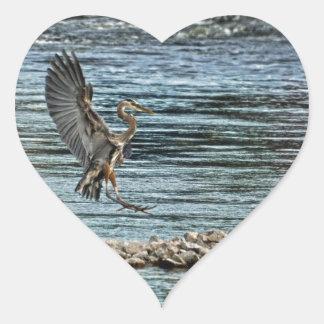 Landing Great Blue Heron Wildlife Birdlover Design Heart Sticker