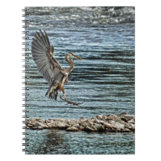 Landing Great Blue Heron Wildlife Birdlover Design Notebook