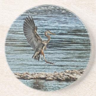 Landing Great Blue Heron Wildlife Birdlover Design Sandstone Coaster
