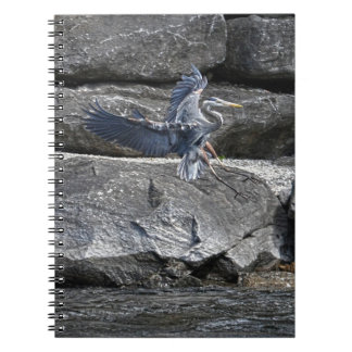 Landing Great Blue Heron Wildlife Birdlover Photo Notebook