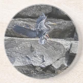 Landing Great Blue Heron Wildlife Birdlover Photo Sandstone Coaster