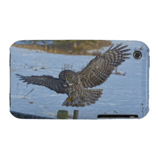 Landing Great Grey Owl and Fence Wildlife Photo iPhone 3 Case