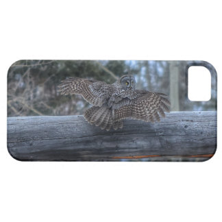 Landing Great Grey Owl and Ranch Gate Pole iPhone 5 Covers