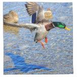 Landing Mallard Drake Wildlife Gift 3 Cloth Napkins