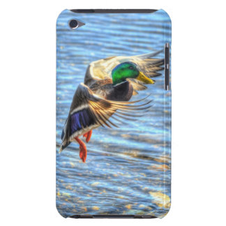Landing Mallard Duck Drake 5 Wildlife Photo Barely There iPod Cover