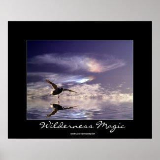 Landing Mallard Duck Wilderness Magic Photo Print zazzle_print