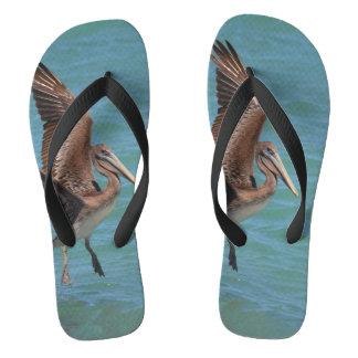 Landing Pelican Flip Flops