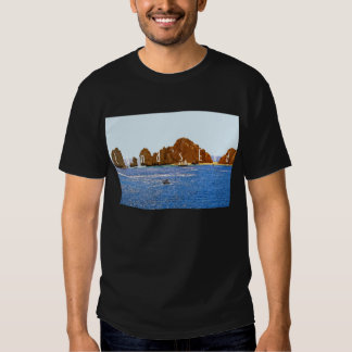 Land's End Dark Basic T-Shirt