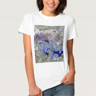 Landsat 7 Lake Carnegie Tshirt