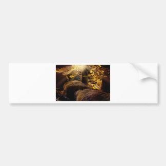landscape-1042-eop bumper sticker